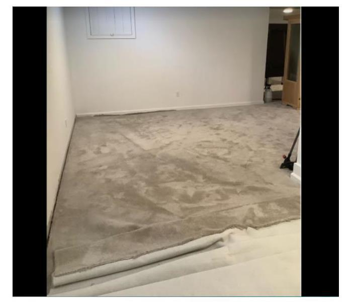 water damage carpet
