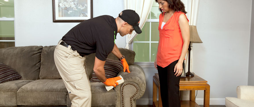 Columbus, OH carpet upholstery cleaning